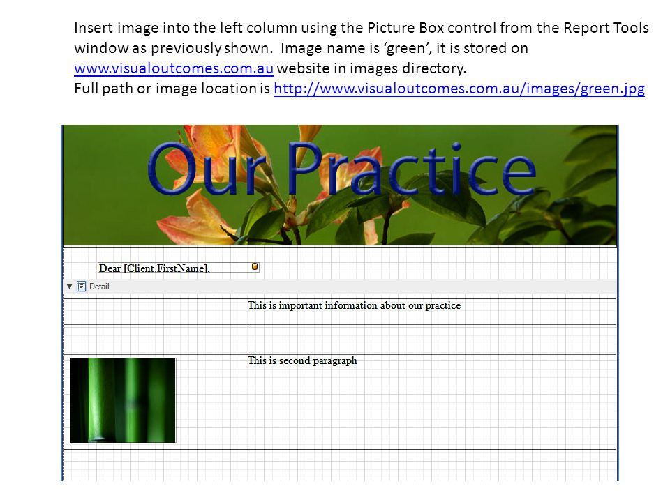Insert image into the left column using the Picture Box control from the Report Tools window as previously shown.