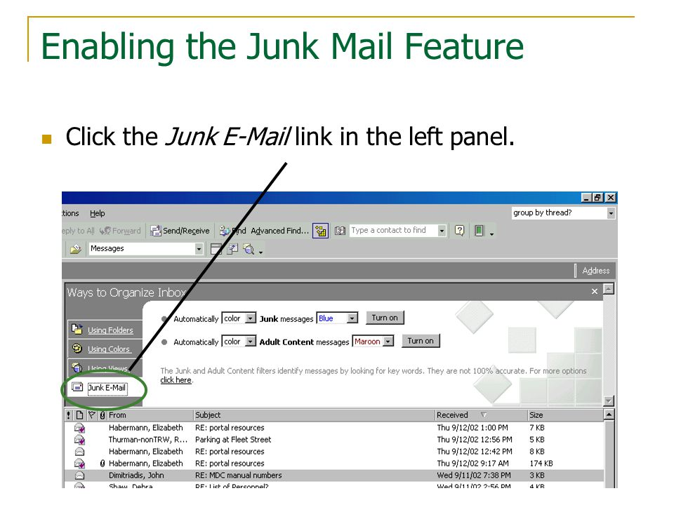 Enabling the Junk Mail Feature Click the Junk E-Mail link in the left panel.