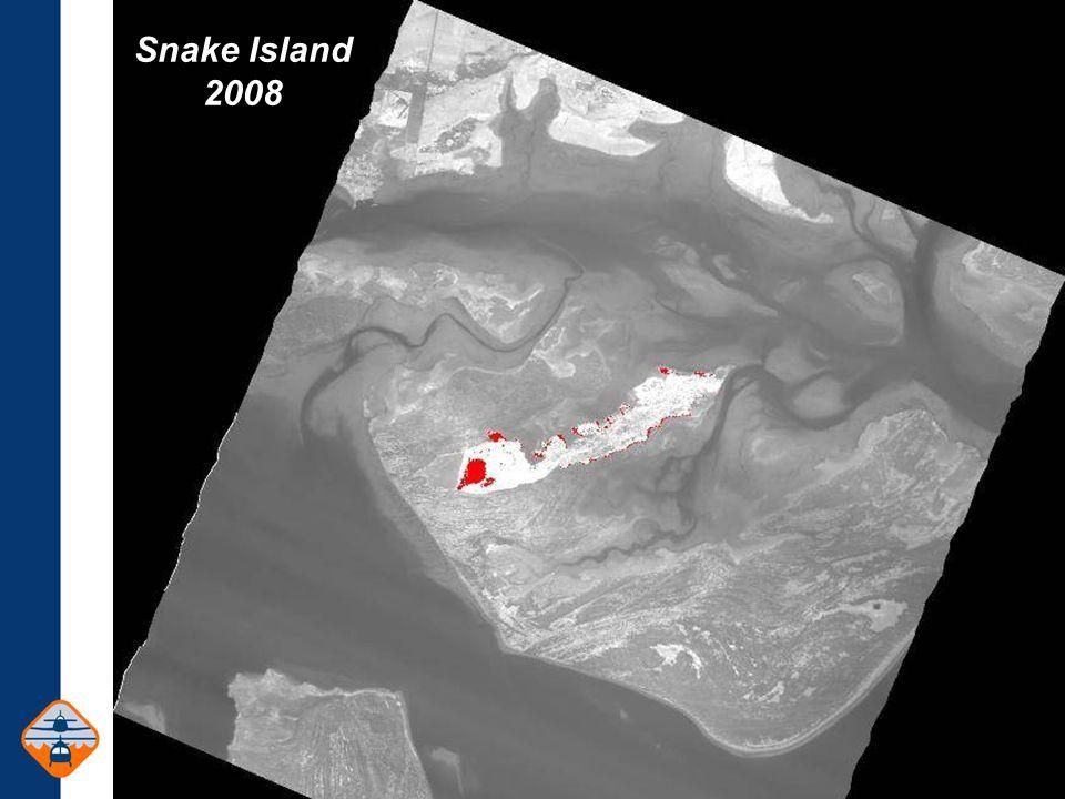Snake Island 2008