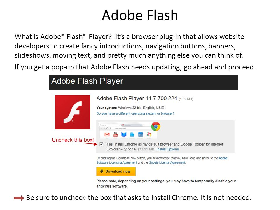 Adobe Flash What is Adobe® Flash® Player? It's a browser plug-in that allows website developers to create fancy introductions, navigation buttons, ban