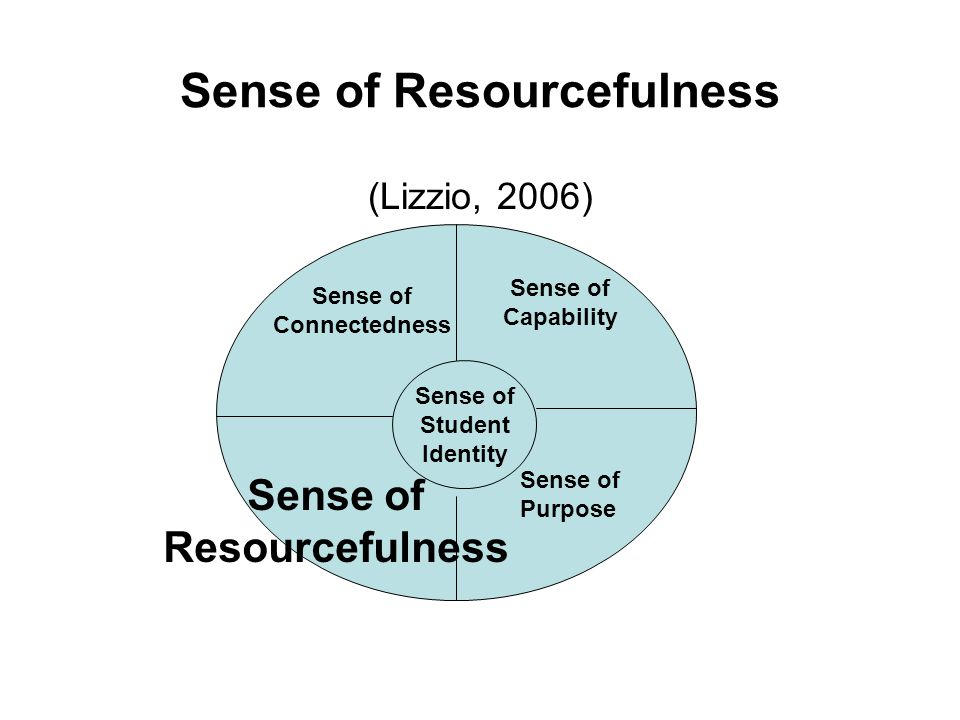 Sense of Resourcefulness (Lizzio, 2006) Sense of Student Identity Sense of Connectedness Sense of Capability Sense of Purpose Sense of Resourcefulness
