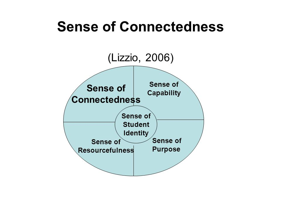 Sense of Connectedness (Lizzio, 2006) Sense of Student Identity Sense of Connectedness Sense of Capability Sense of Purpose Sense of Resourcefulness