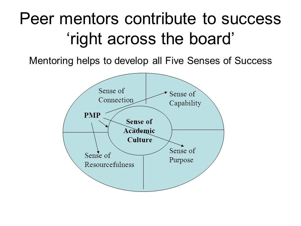 Peer mentors contribute to success 'right across the board' Mentoring helps to develop all Five Senses of Success Sense of Academic Culture Sense of C