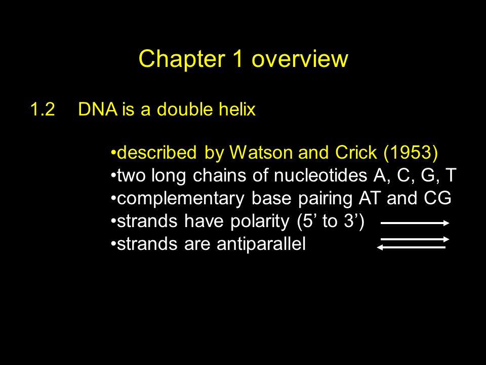 Chapter 1 overview 1.2DNA is a double helix two long chains of nucleotides A, C, G, T complementary base pairing AT and CG strands have polarity (5' t