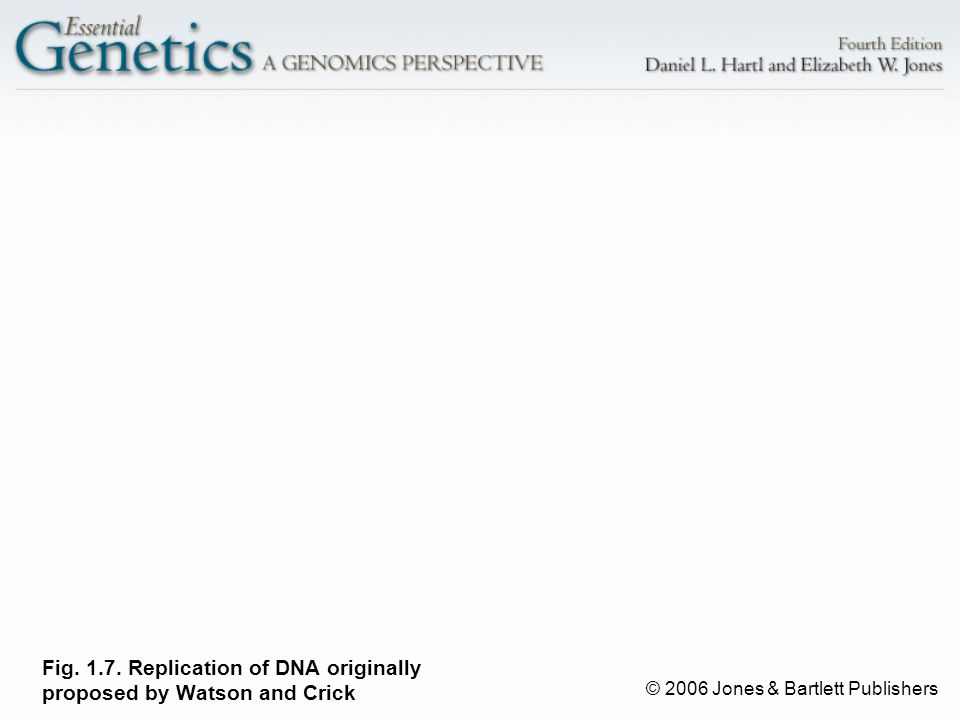 © 2006 Jones & Bartlett Publishers Fig. 1.7. Replication of DNA originally proposed by Watson and Crick
