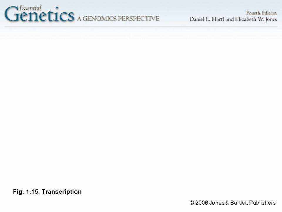 © 2006 Jones & Bartlett Publishers Fig. 1.15. Transcription