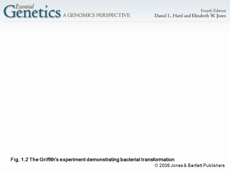© 2006 Jones & Bartlett Publishers Fig. 1.2 The Griffith's experiment demonstrating bacterial transformation