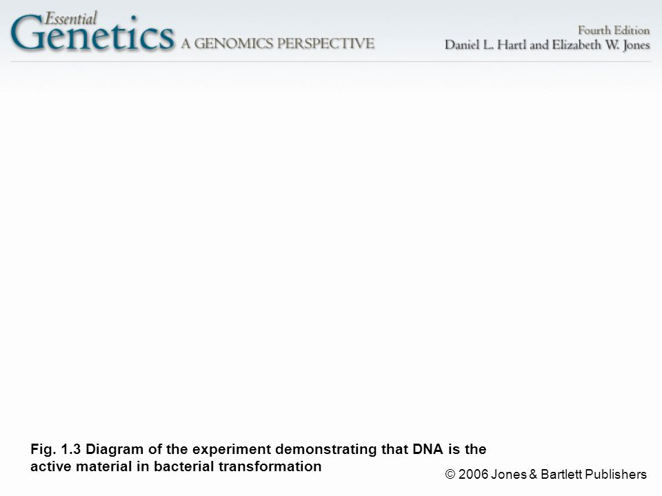 © 2006 Jones & Bartlett Publishers Fig. 1.3 Diagram of the experiment demonstrating that DNA is the active material in bacterial transformation