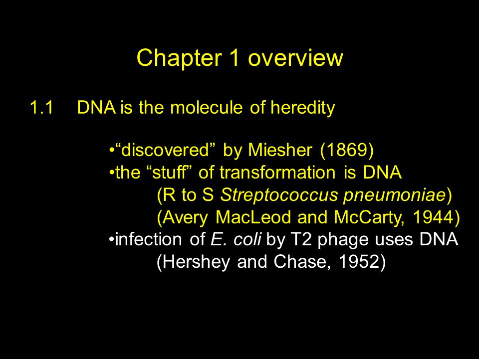 Chapter 1 overview 1.1DNA is the molecule of heredity discovered by Miesher (1869) the stuff of transformation is DNA (R to S Streptococcus pneumoniae) (Avery MacLeod and McCarty, 1944) infection of E.