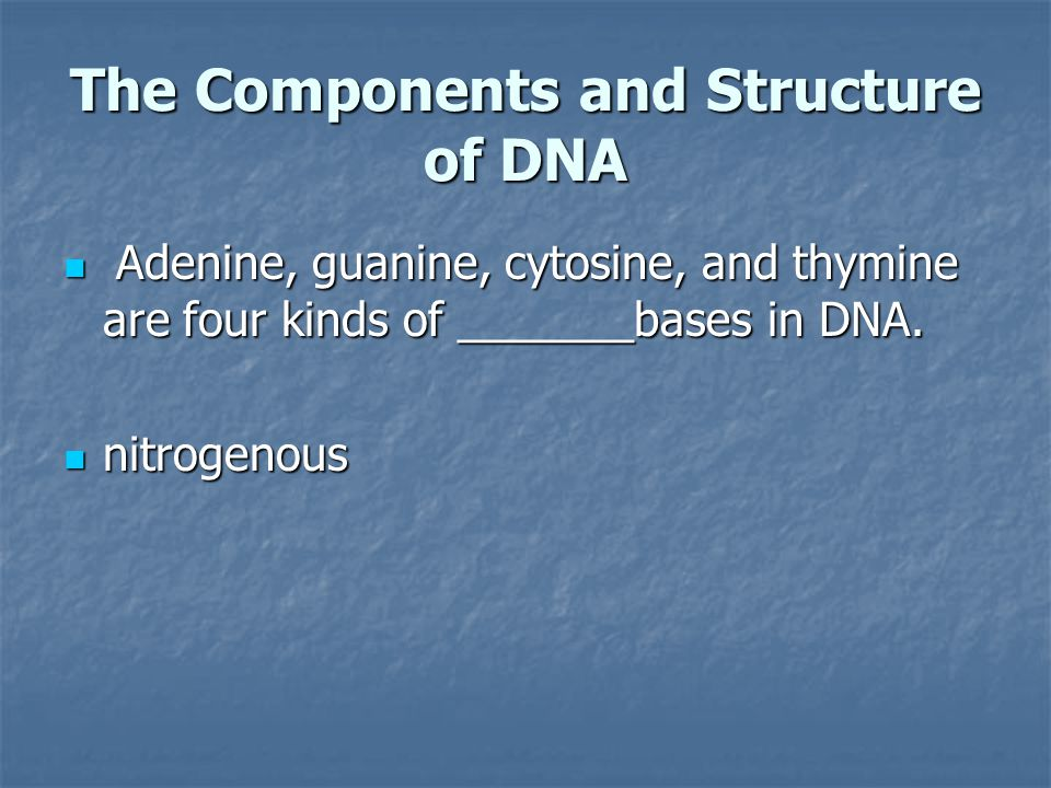 The Components and Structure of DNA Adenine, guanine, cytosine, and thymine are four kinds of _______bases in DNA. Adenine, guanine, cytosine, and thy