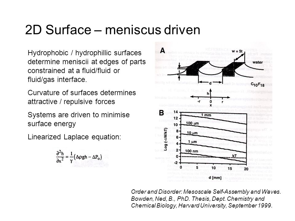2D Surface – meniscus driven Hydrophobic / hydrophillic surfaces determine meniscii at edges of parts constrained at a fluid/fluid or fluid/gas interface.