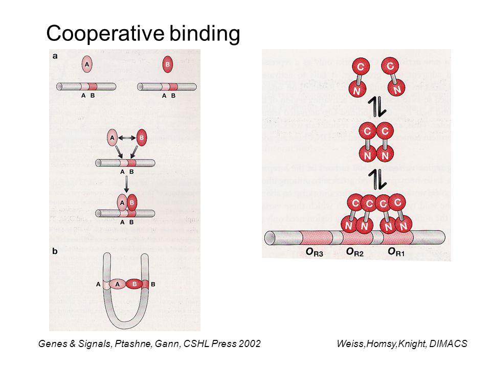 Cooperative binding Genes & Signals, Ptashne, Gann, CSHL Press 2002Weiss,Homsy,Knight, DIMACS