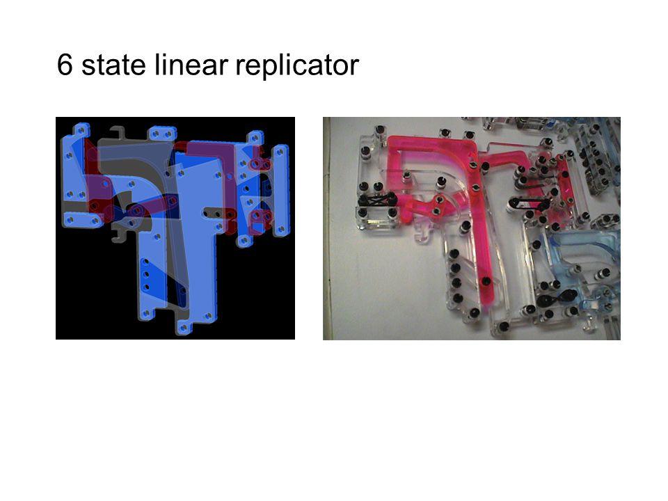 6 state linear replicator