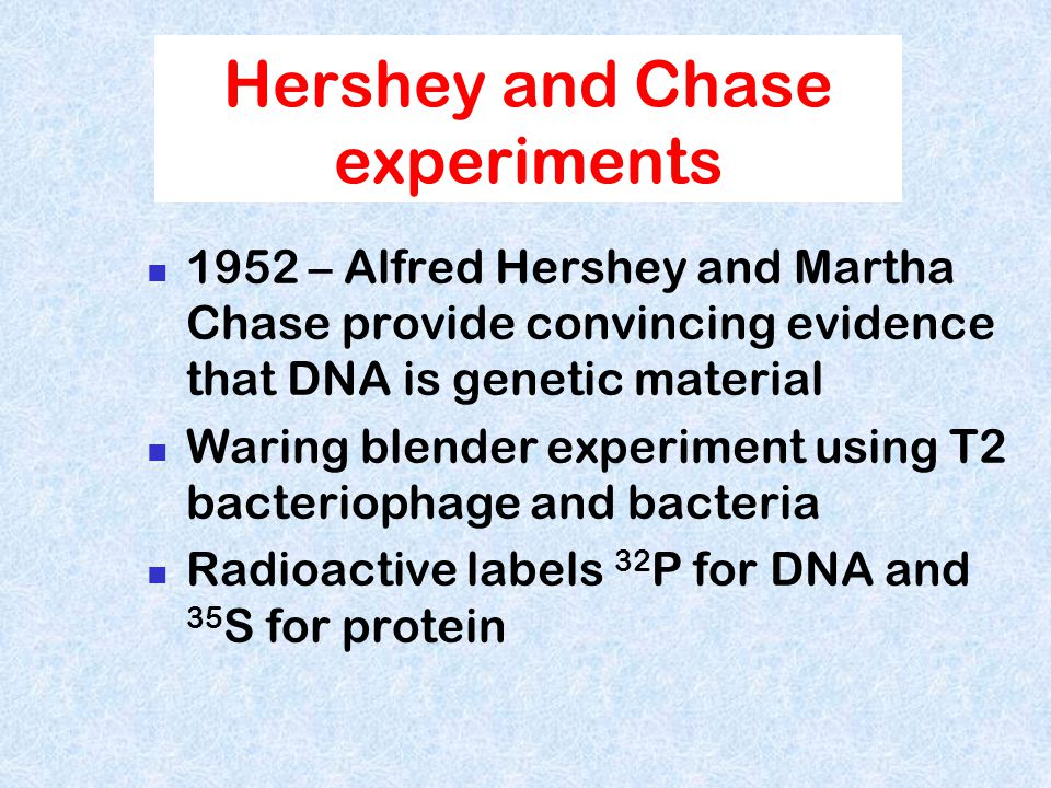 Timeline 1800's F Miescher - nucleic acids 1928 F. Griffith - Transforming principle 1952 Avery, McCleod & McCarty- Transforming principle is DNA 1944