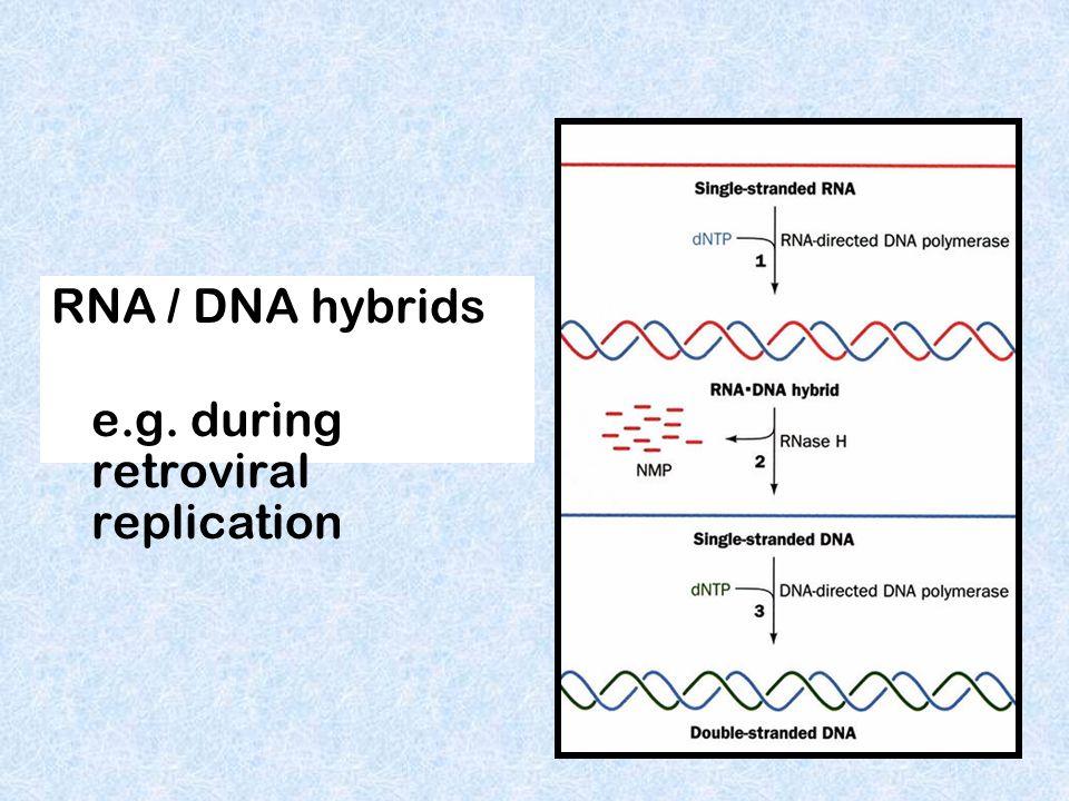 reoviruses Double stranded RNA Genetic material may be RNA Single stranded RNA Retroviruses like HIV