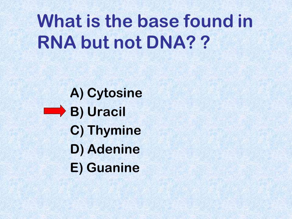 RNA / DNA hybrids e.g. during retroviral replication
