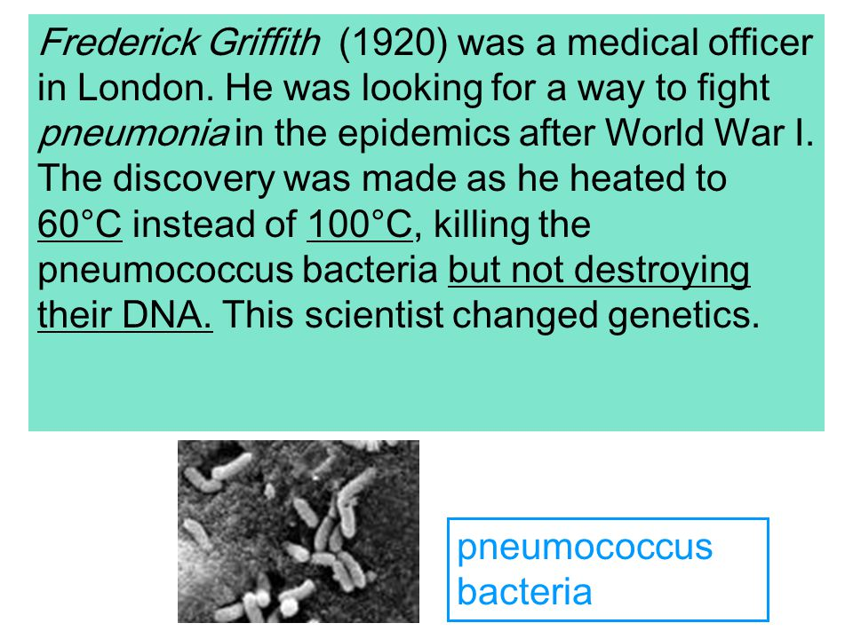 Frederick Griffith (1920) was a medical officer in London.