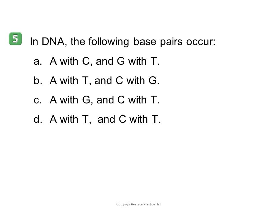 Copyright Pearson Prentice Hall 12–1 In DNA, the following base pairs occur: a.A with C, and G with T. b.A with T, and C with G. c.A with G, and C wit