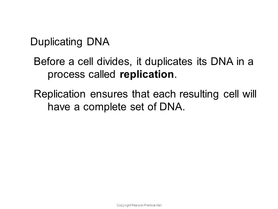 Copyright Pearson Prentice Hall DNA Replica tion Duplicating DNA Before a cell divides, it duplicates its DNA in a process called replication. Replica