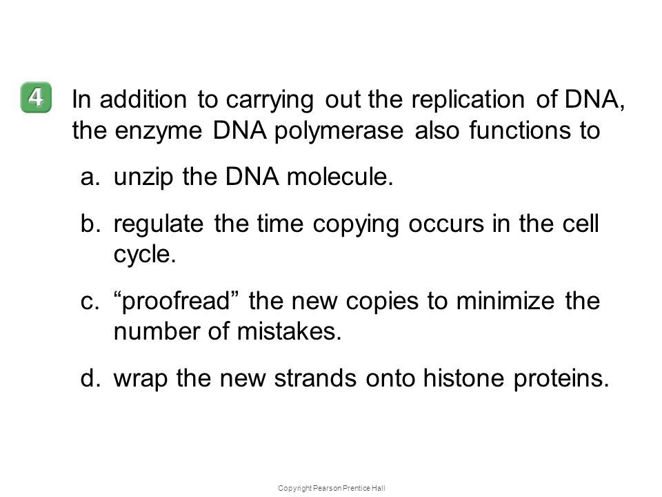 Copyright Pearson Prentice Hall 12–2 In addition to carrying out the replication of DNA, the enzyme DNA polymerase also functions to a.unzip the DNA m