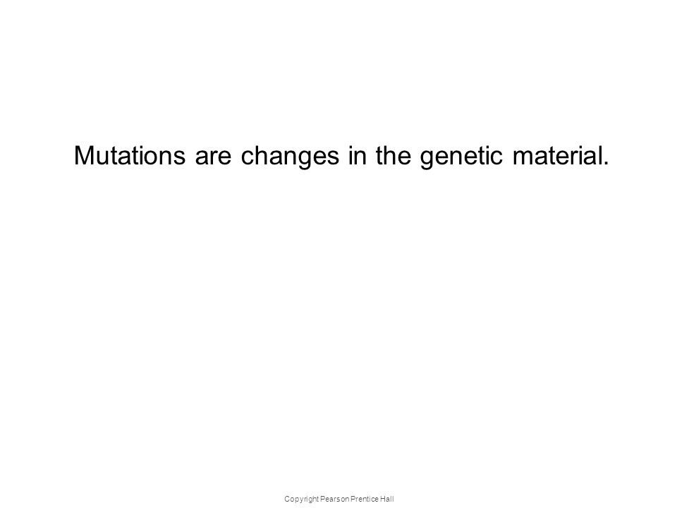Copyright Pearson Prentice Hall 12- 4 Mutati ons Mutations are changes in the genetic material.