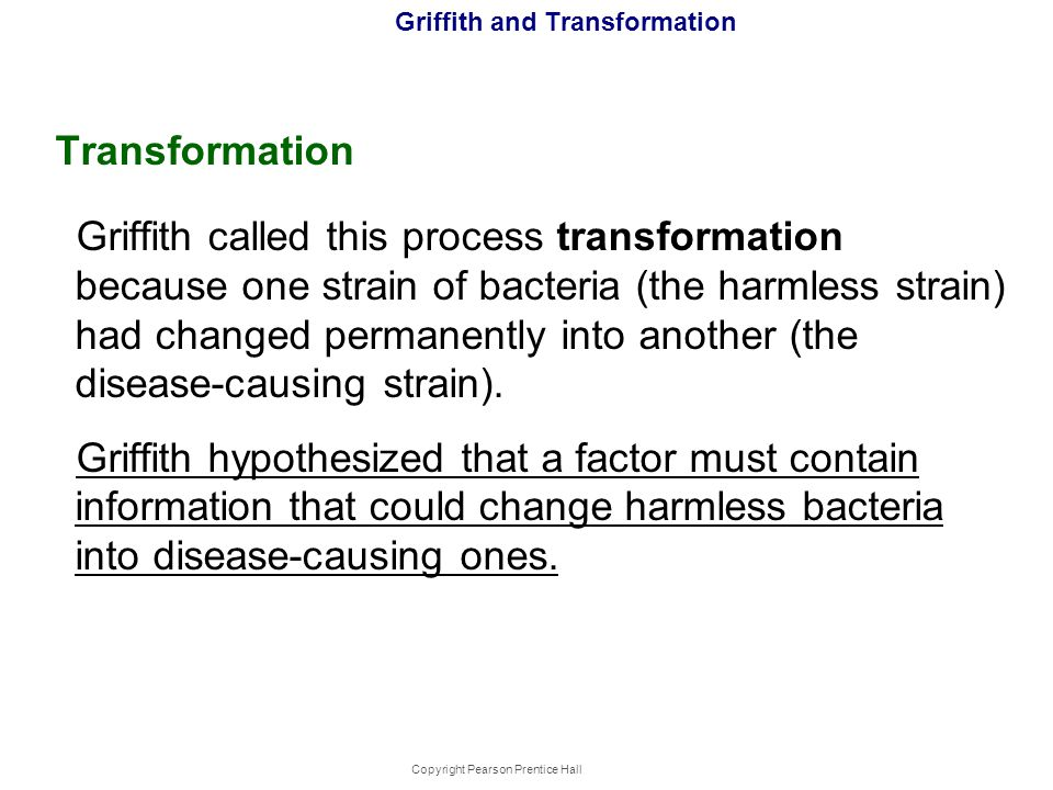 Copyright Pearson Prentice Hall Griffith and Transformation Transformation Griffith called this process transformation because one strain of bacteria