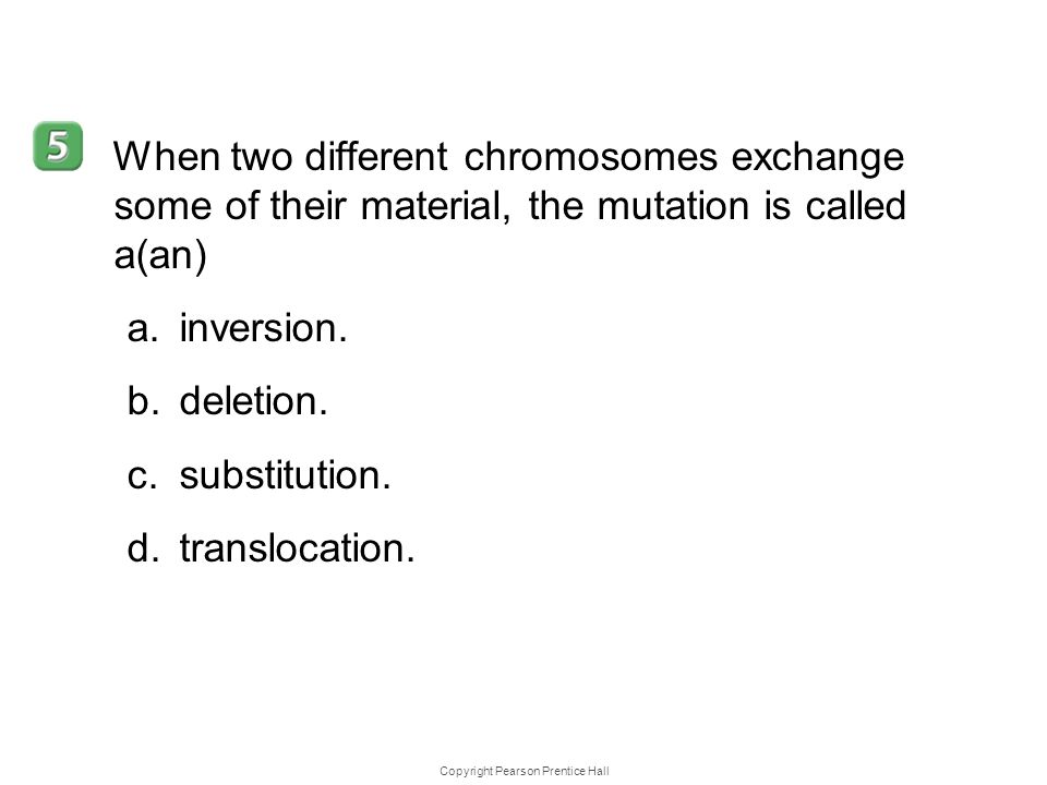 Copyright Pearson Prentice Hall 12–4 When two different chromosomes exchange some of their material, the mutation is called a(an) a.inversion. b.delet