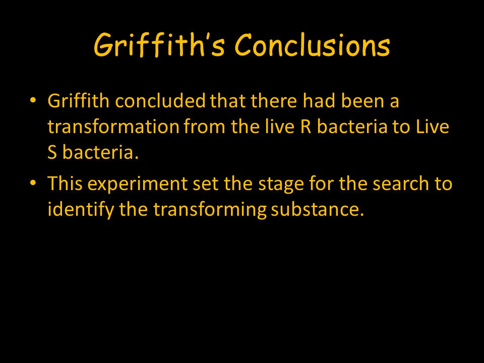 Griffith's Conclusions Griffith concluded that there had been a transformation from the live R bacteria to Live S bacteria. This experiment set the st