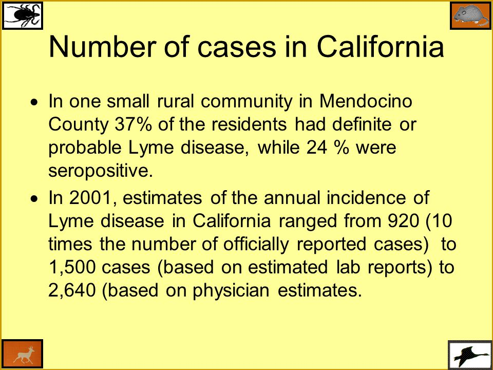 Number of cases in California  In one small rural community in Mendocino County 37% of the residents had definite or probable Lyme disease, while 24