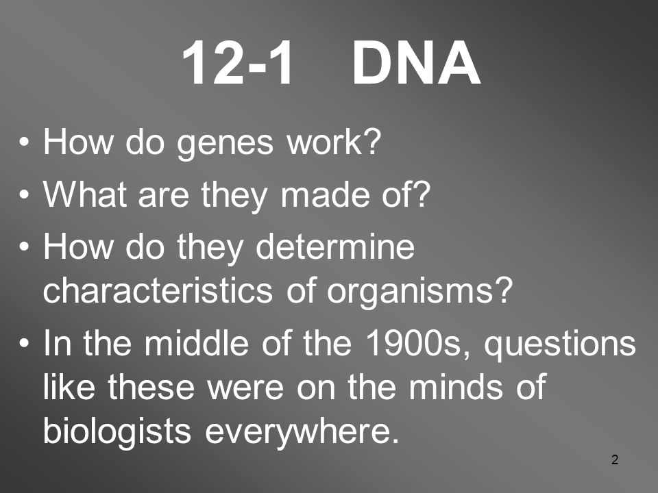 2 12-1 DNA How do genes work. What are they made of.