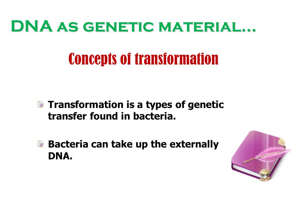 DNA as genetic material… Concepts of transformation Transformation is a types of genetic transfer found in bacteria. Bacteria can take up the external