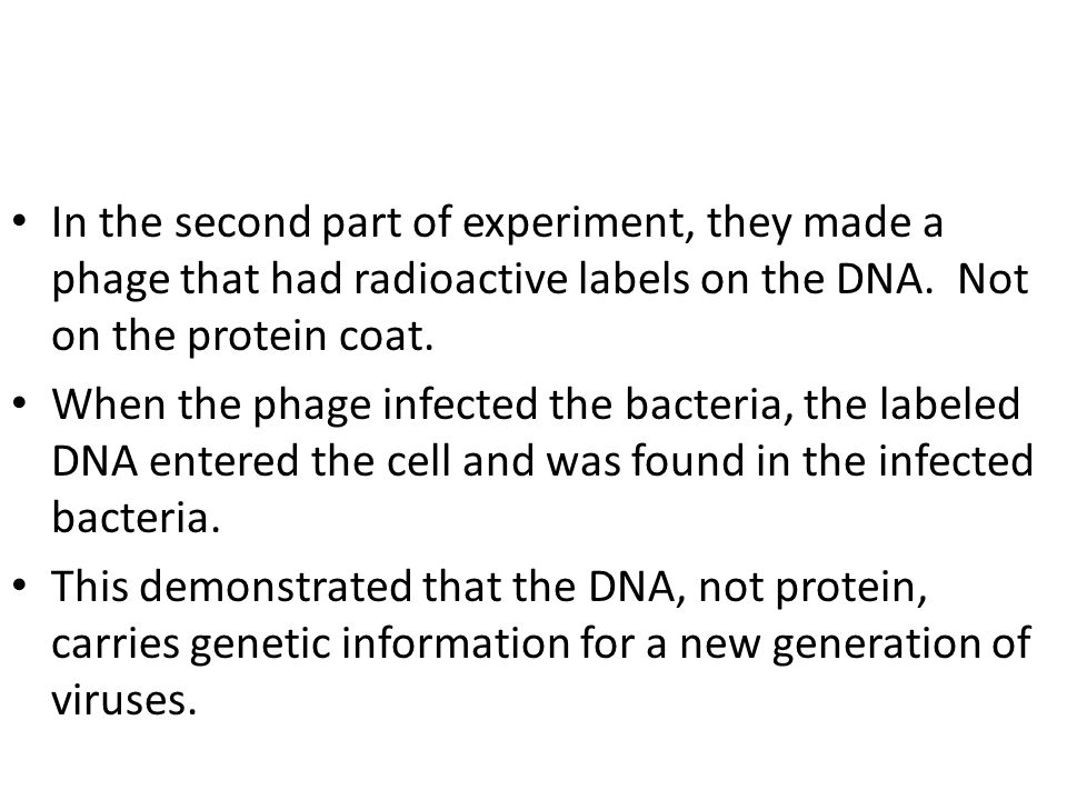 In the second part of experiment, they made a phage that had radioactive labels on the DNA. Not on the protein coat. When the phage infected the bacte