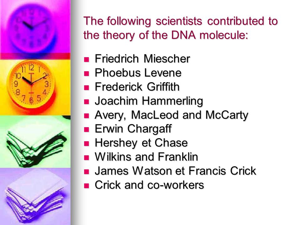 The following scientists contributed to the theory of the DNA molecule: Friedrich Miescher Friedrich Miescher Phoebus Levene Phoebus Levene Frederick