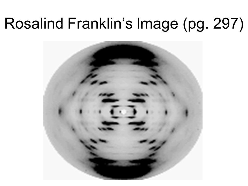 Rosalind Franklin's Image (pg. 297) and Media
