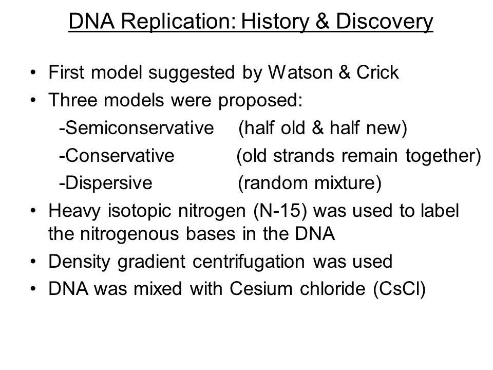 DNA Replication: History & Discovery First model suggested by Watson & Crick Three models were proposed: -Semiconservative (half old & half new) -Conservative (old strands remain together) -Dispersive (random mixture) Heavy isotopic nitrogen (N-15) was used to label the nitrogenous bases in the DNA Density gradient centrifugation was used DNA was mixed with Cesium chloride (CsCl)