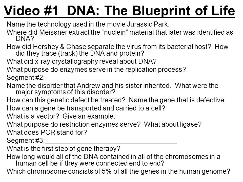 Video #1 DNA: The Blueprint of Life Name the technology used in the movie Jurassic Park.