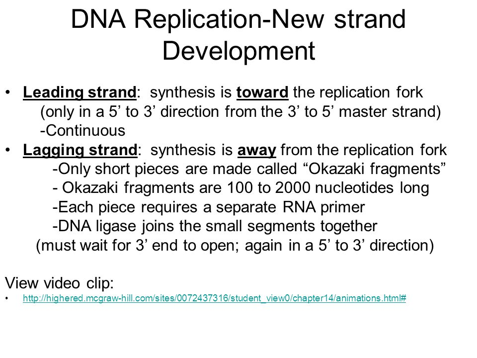 DNA Replication-New strand Development Leading strand: synthesis is toward the replication fork (only in a 5' to 3' direction from the 3' to 5' master strand) -Continuous Lagging strand: synthesis is away from the replication fork -Only short pieces are made called Okazaki fragments - Okazaki fragments are 100 to 2000 nucleotides long -Each piece requires a separate RNA primer -DNA ligase joins the small segments together (must wait for 3' end to open; again in a 5' to 3' direction) View video clip: http://highered.mcgraw-hill.com/sites/0072437316/student_view0/chapter14/animations.html#