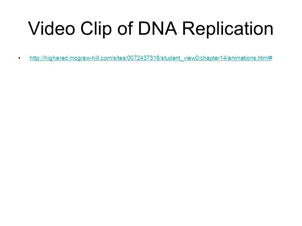Video Clip of DNA Replication http://highered.mcgraw-hill.com/sites/0072437316/student_view0/chapter14/animations.html#