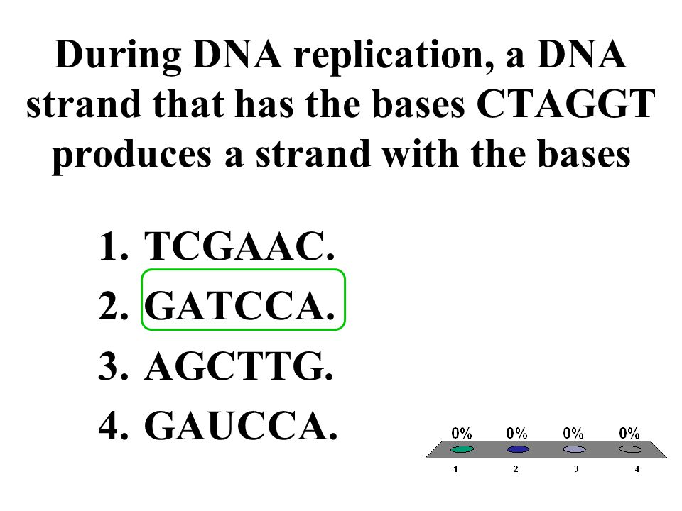 During DNA replication, a DNA strand that has the bases CTAGGT produces a strand with the bases 1.TCGAAC.