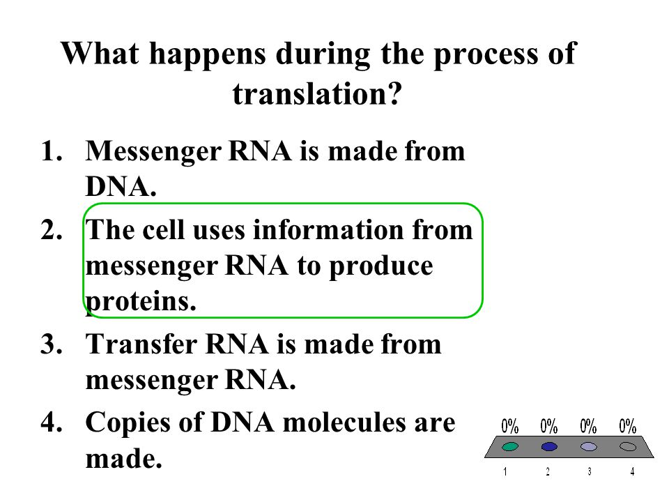 What happens during the process of translation? 1.Messenger RNA is made from DNA. 2.The cell uses information from messenger RNA to produce proteins.