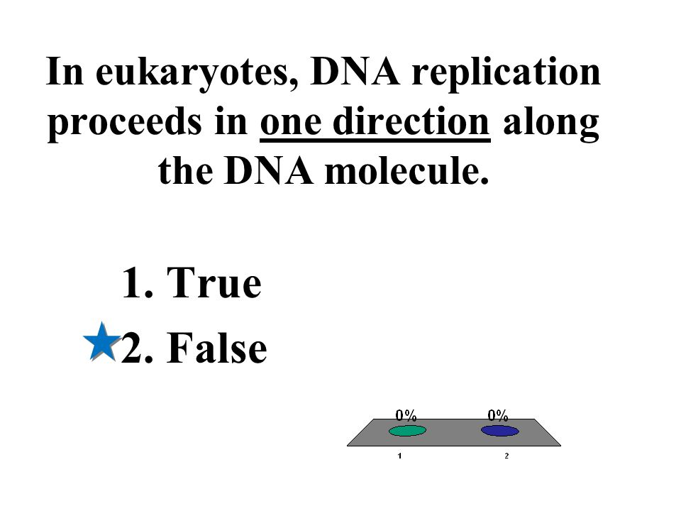 In eukaryotes, DNA replication proceeds in one direction along the DNA molecule. 1.True 2.False