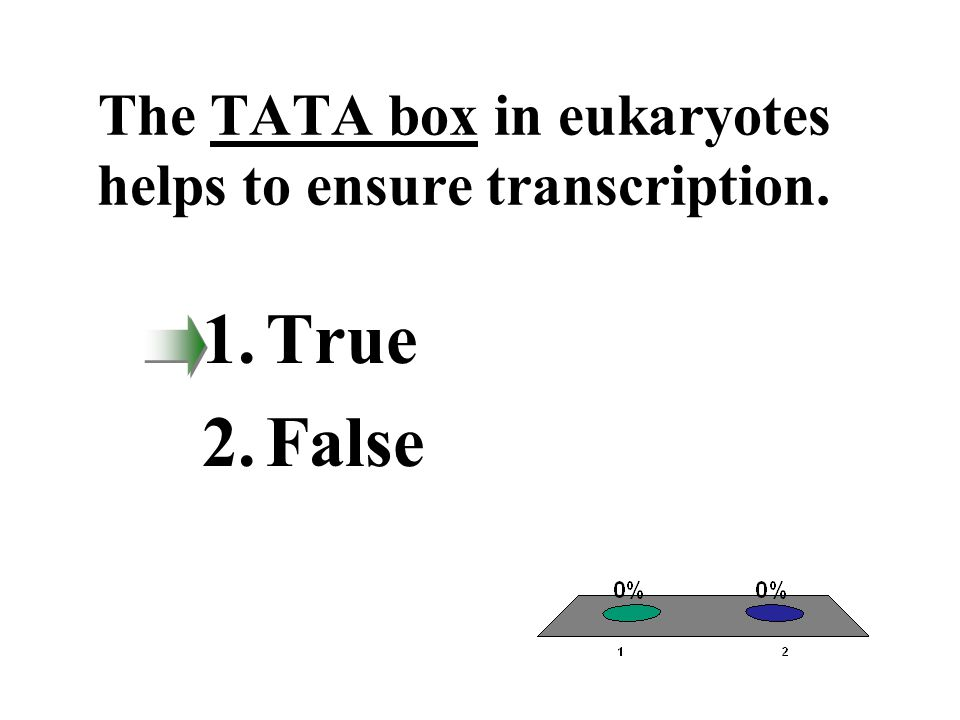 The TATA box in eukaryotes helps to ensure transcription. 1.True 2.False