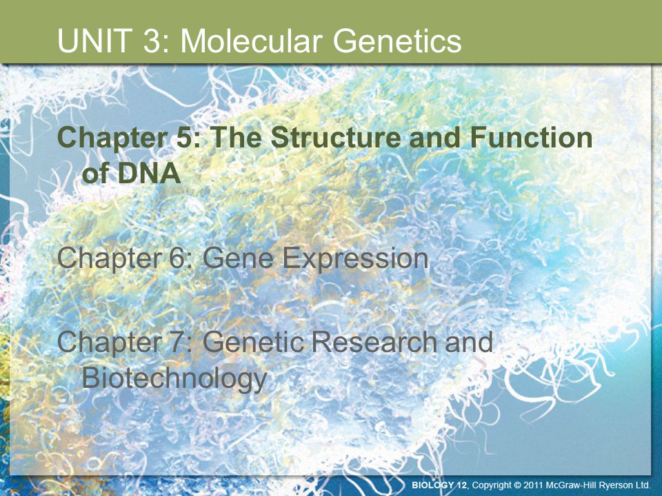 The DNA Double Helix UNIT 3 Chapter 5: The Structure and Function of DNA Section 5.1