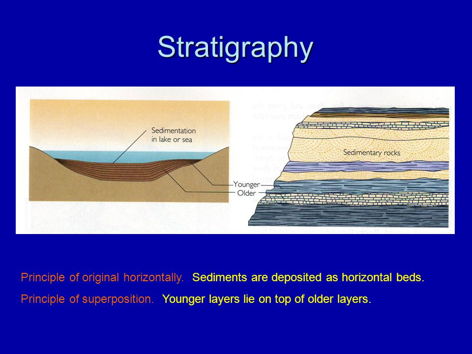 Stratigraphy Principle of original horizontally. Sediments are deposited as horizontal beds. Principle of superposition. Younger layers lie on top of