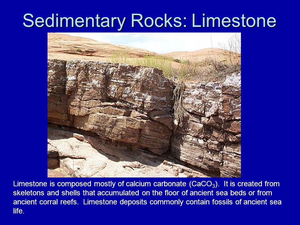 Sedimentary Rocks: Limestone Limestone is composed mostly of calcium carbonate (CaCO 3 ). It is created from skeletons and shells that accumulated on