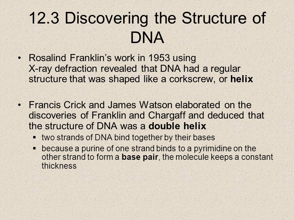 12.3 Discovering the Structure of DNA Rosalind Franklin's work in 1953 using X-ray defraction revealed that DNA had a regular structure that was shaped like a corkscrew, or helix Francis Crick and James Watson elaborated on the discoveries of Franklin and Chargaff and deduced that the structure of DNA was a double helix  two strands of DNA bind together by their bases  because a purine of one strand binds to a pyrimidine on the other strand to form a base pair, the molecule keeps a constant thickness
