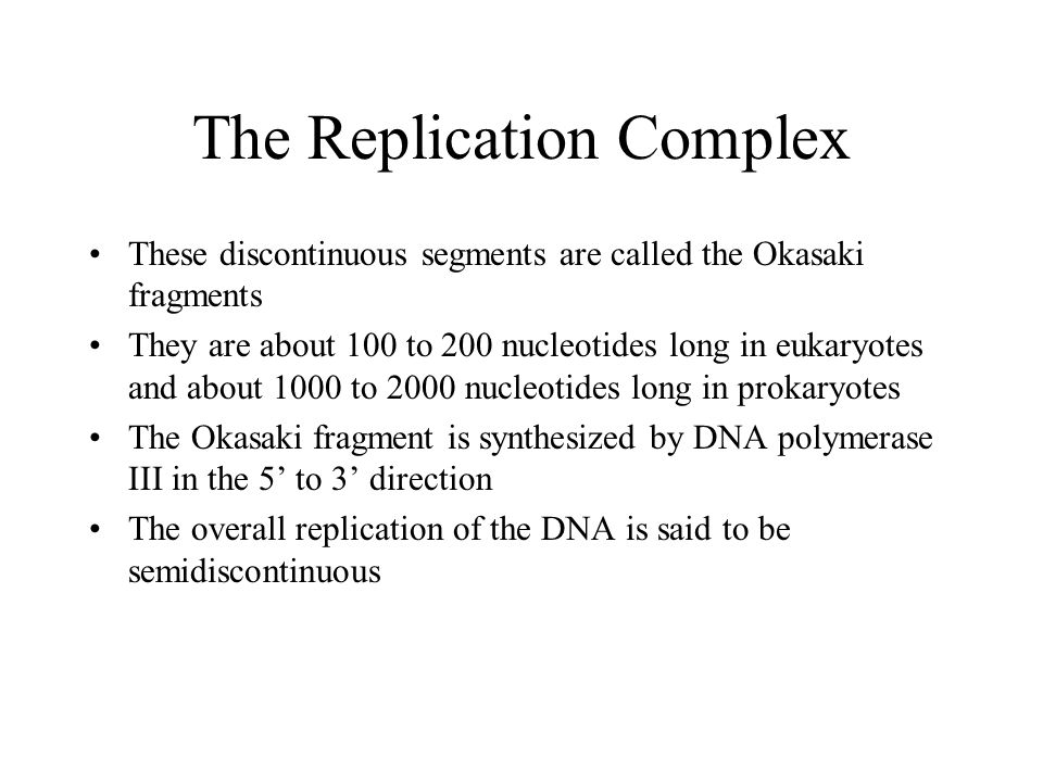 The Replication Complex These discontinuous segments are called the Okasaki fragments They are about 100 to 200 nucleotides long in eukaryotes and abo