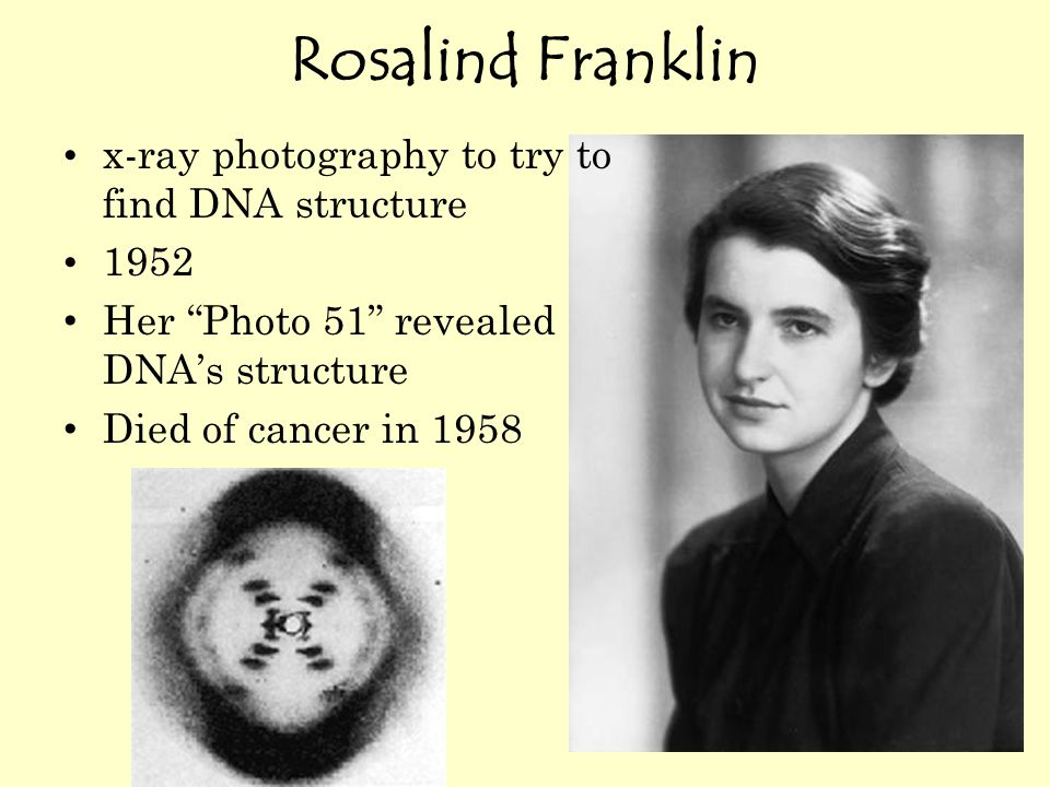 "Rosalind Franklin x-ray photography to try to find DNA structure 1952 Her ""Photo 51"" revealed DNA's structure Died of cancer in 1958"