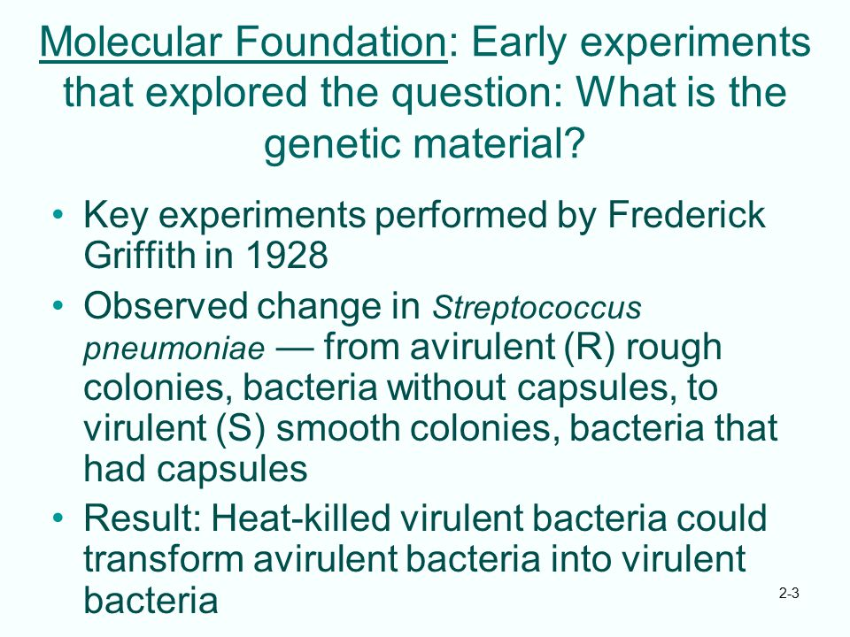 2-3 Molecular Foundation: Early experiments that explored the question: What is the genetic material? Key experiments performed by Frederick Griffith