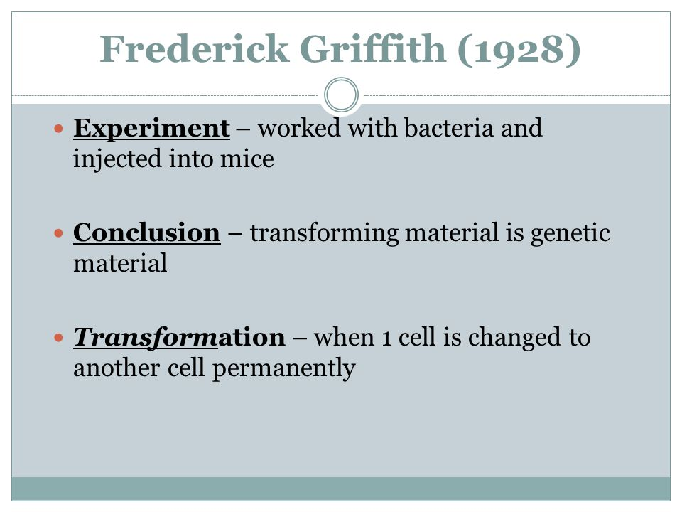 Frederick Griffith (1928) Experiment – worked with bacteria and injected into mice Conclusion – transforming material is genetic material Transformation – when 1 cell is changed to another cell permanently